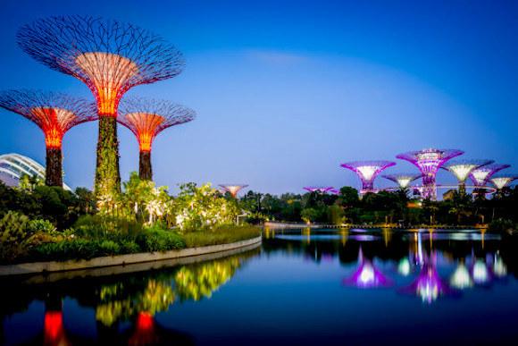 Singapore Trip (Copy1)